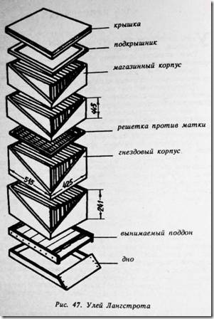 В конструкциях корпусов ульев